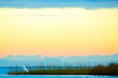 1_Ocracoke
